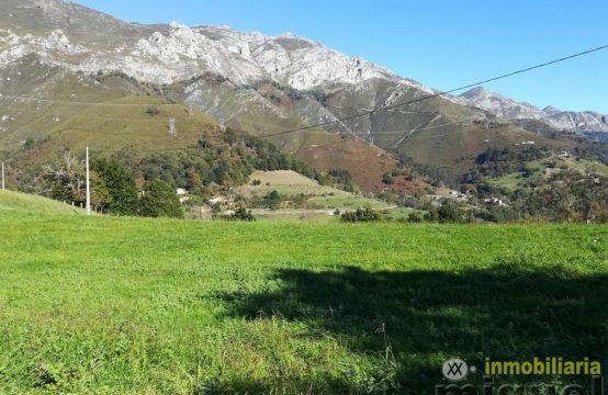 V1857-Casa con terreno en La collada, Peñamellera Alta, ASTURIAS 01 Inmobiliaria Miguel