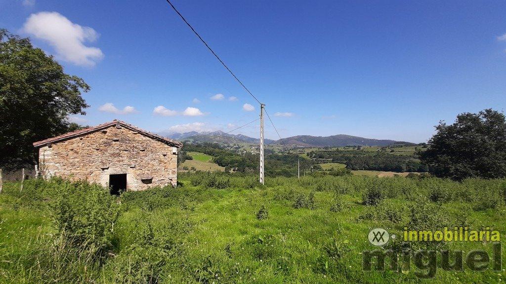 Vender-Cabana-en-Herrerias-CANTABRIA-V2141-10