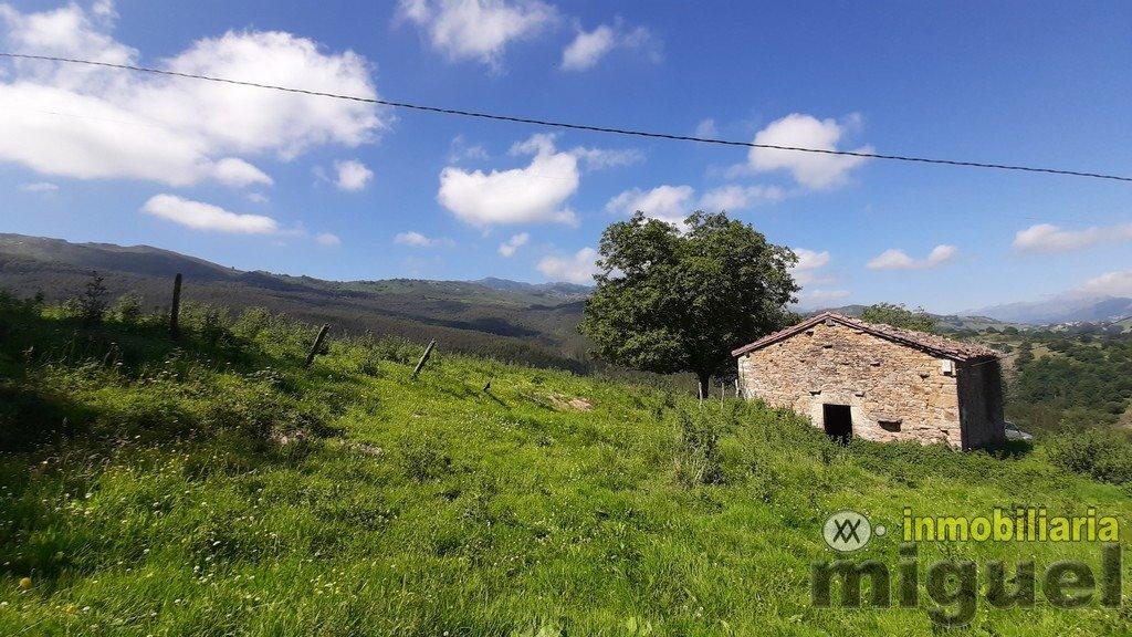 Vender-Cabana-en-Herrerias-CANTABRIA-V2141-12