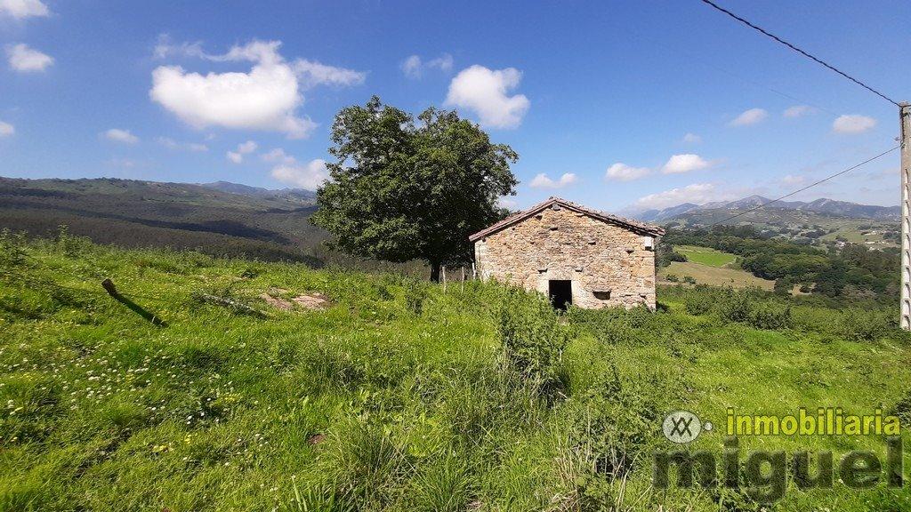 Vender-Cabana-en-Herrerias-CANTABRIA-V2141-13