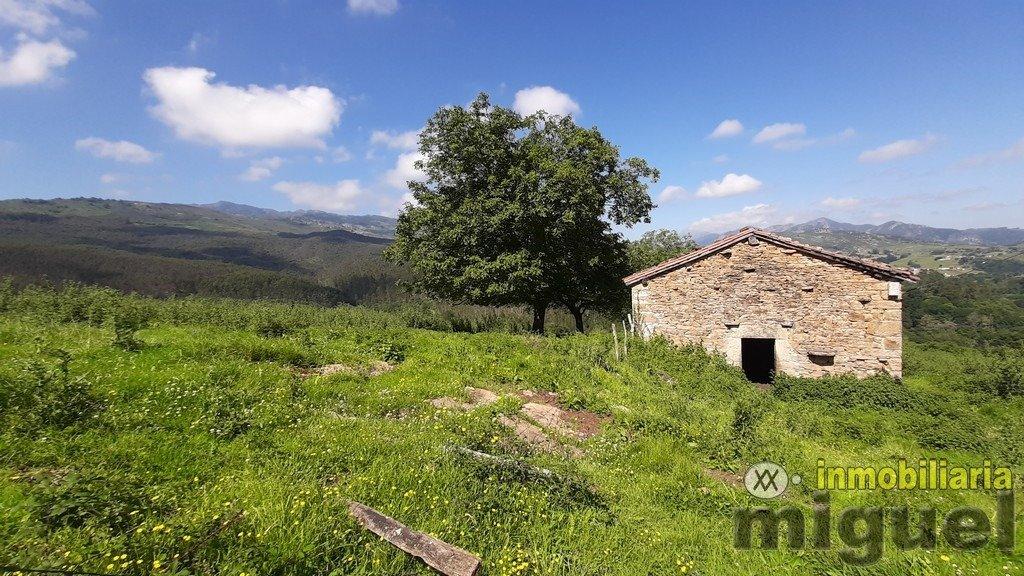 Vender-Cabana-en-Herrerias-CANTABRIA-V2141-15