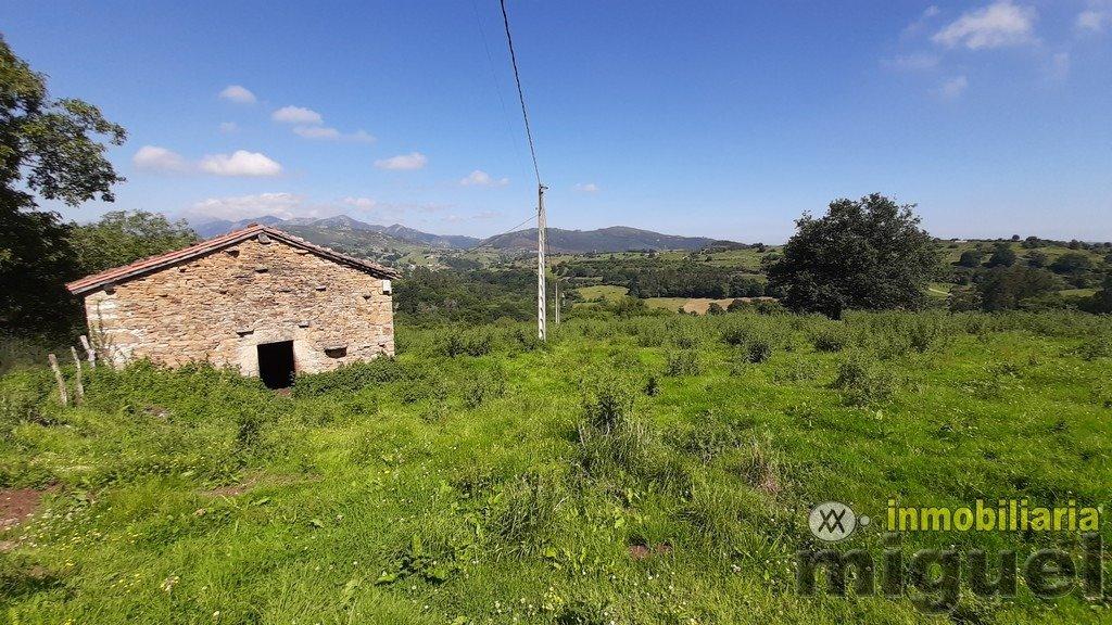 Vender-Cabana-en-Herrerias-CANTABRIA-V2141-23