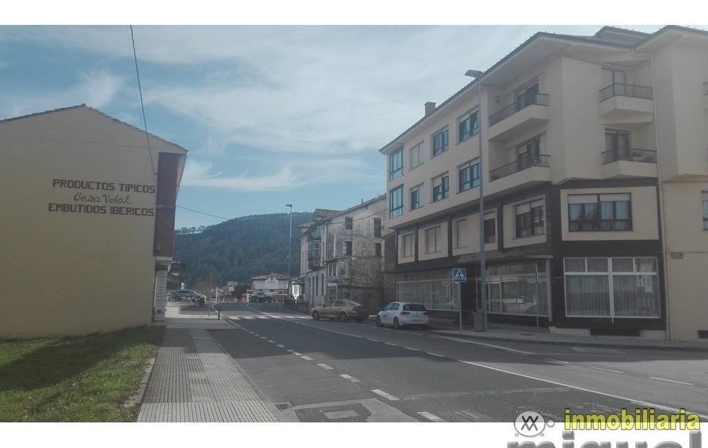 Vender-Local-comercial-en-Unquera-CANTABRIA-V2123-11