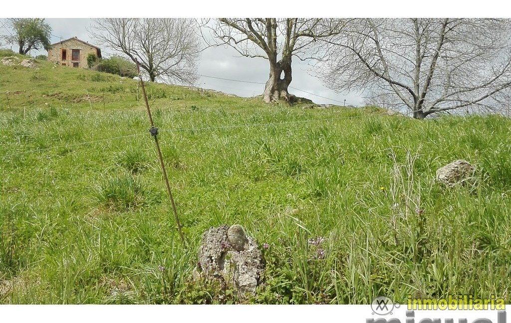 Vender-Parcela-en-Ribadedeva-ASTURIAS-V2131-8